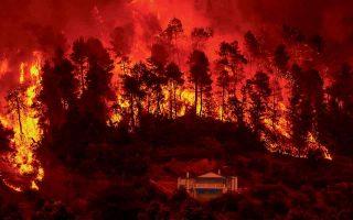 Στις πρόσφατες πολυήμερες πυρκαγιές οι καύσωνες, η έντονη ξηρασία και η άφθονη καύσιμη ύλη από τις πευκοβελόνες δημιούργησαν τεράστιο θερμικό φορτίο που έφτασε και τους 1.000 βαθμούς, καθιστώντας την κατάσβεσή τους πολύ δύσκολο εγχείρημα. (Φωτ. ASSOCIATED PRESS)