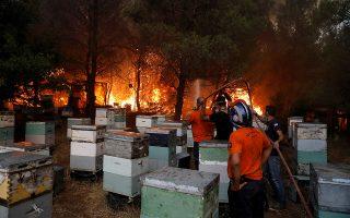 REUTERS/Costas Baltas