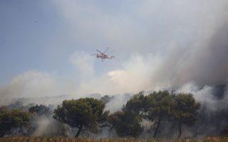 Φωτ. από την πυρκαγιά στην Κερατέα/ΑΠΕ-ΜΠΕ