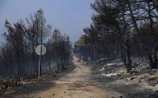 Παρά τις συνεχείς ρίψεις νερού από τα πυροσβεστικά αεροπλάνα και τα ελικόπτερα στην περιοχή, το πύρινο μέτωπο παρέμενε «φουντωμένο». (Φωτ. INTIME NEWS)