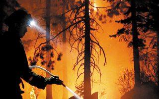 Οι πυρκαγιές αποτελούν μια σοβαρή αιτία, ωστόσο η βασικότερη είναι η αποψίλωση δασών (φωτ. REUTERS).
