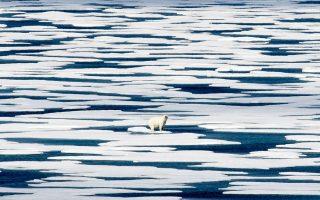 Η άνοδος της θερμοκρασίας διαταράσσει την κυκλοφορία του αέρα στην Αρκτική, διευκολύνοντας την κάθοδο ψυχρών αερίων μαζών πολύ νοτιότερα. (Φωτ. A.P. Photo / David Goldman)
