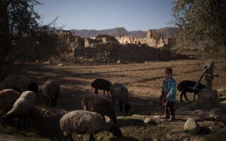 Αγόρι στέκεται μπροστά από ένα κοπάδι πρόβατα σε χωριό στην επαρχία Βαρντάκ του Αφγανιστάν. AP Photo/Felipe Dana