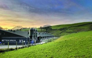 Η διαδικασία παραγωγής ζωοτροφής με το κοντέινερ Χ1 γίνεται με τρόπο αυτοματοποιημένο. Σύμφωνα με τα ευρήματα έρευνας συμβουλευτικής εταιρείας στο Λονδίνο, ένα κοντέινερ Χ1 μπορεί να περιορίσει τις εκπομπές 565 τόνων διοξειδίου του άνθρακα τον χρόνο.