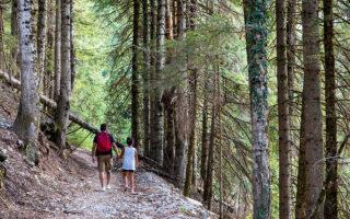 Μέσα στο πυκνό δάσος των Μελισσουργών, περπατώντας προς τον φημισμένο καταρράκτη. (Φωτογραφίες: Όλγα Χαραμή)